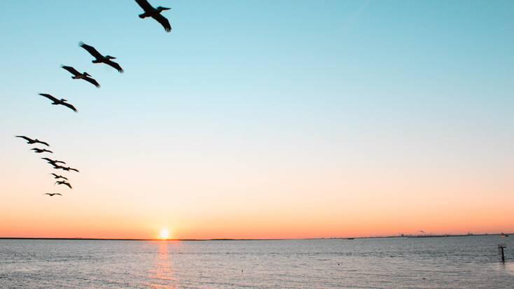Sunset over Galveston, Tx