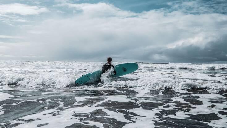 A surfer walking into the ocean in Westport, WA