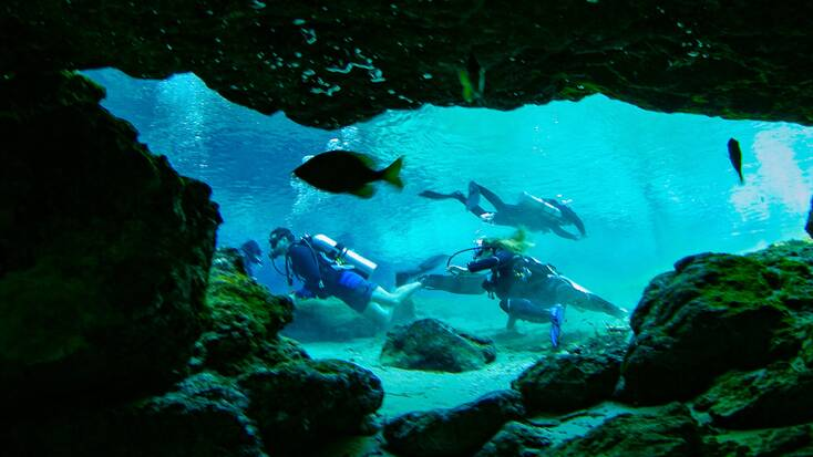 Scuba diving in Ginnie Springs, Florida