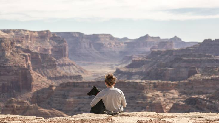 A dog and their human admiring the views from the Grand Canyon, Utah