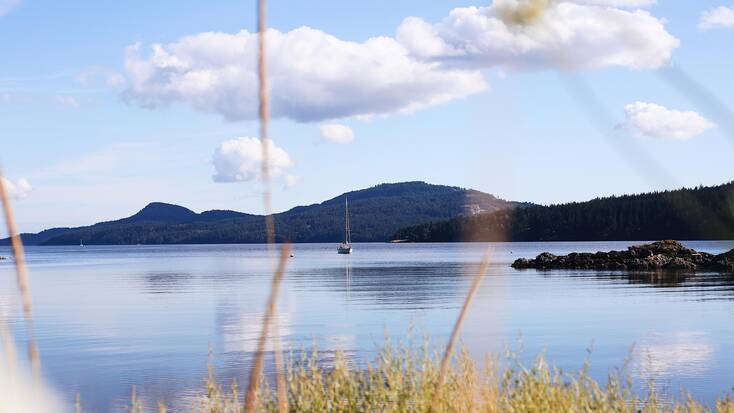 A sailing boat on the water just off the shoreline of Orcas Island