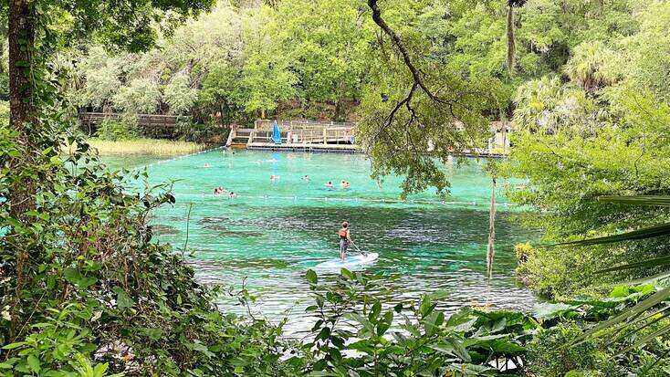 Stand up paddle boarding in Rainbow Springs