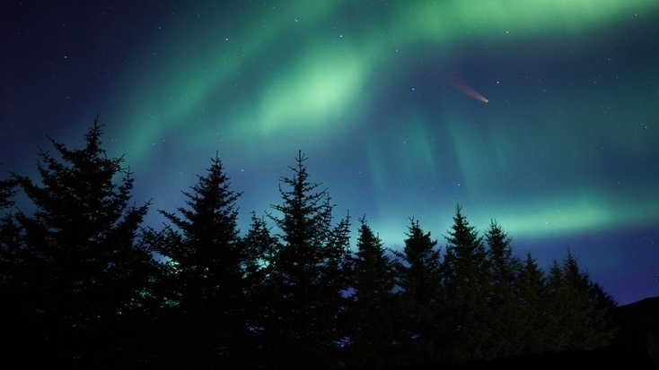 Trees and are here to watch the skies during world asteroid day