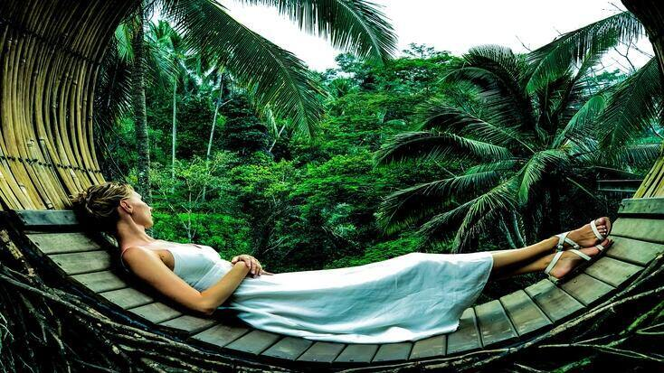 The Amazon Rainforest is a hot spot for the eco tourist
