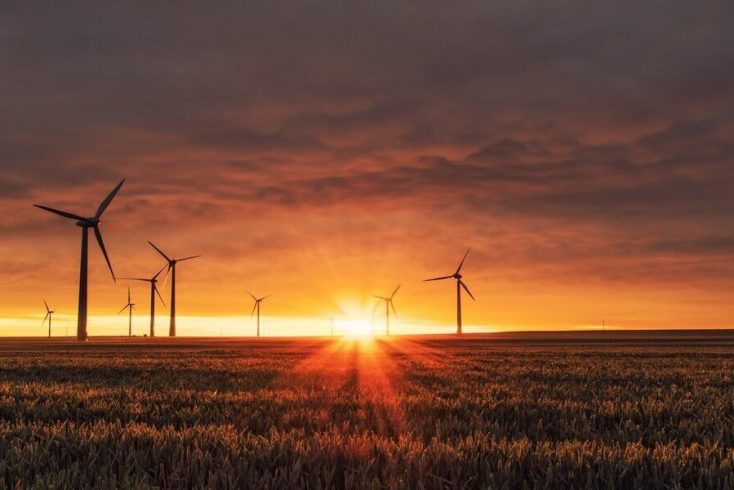 Windmills provide energy from renewable sources