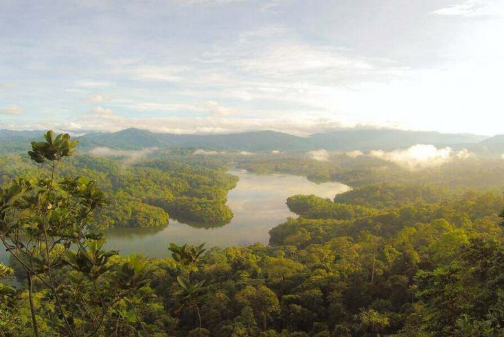 Borneo Rainforest is amongst the best green holiday destinations