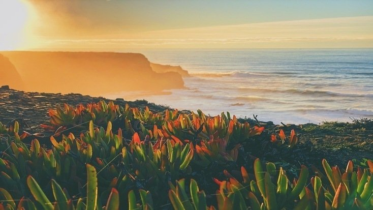 Do something special! A summer vacation in Portugal & campervan rentals made luxuriously await.